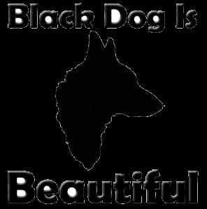 ebcsontodu partner - fekete kutya