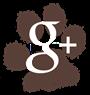Ebcsont Masszázs Odú - Terápiás Kutyamasszázs google+
