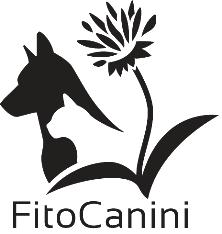 ebcsontodu partner - fitocanini